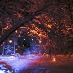 Joulunavaus